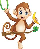 Cartoon monkey on a branch tree and holding banana