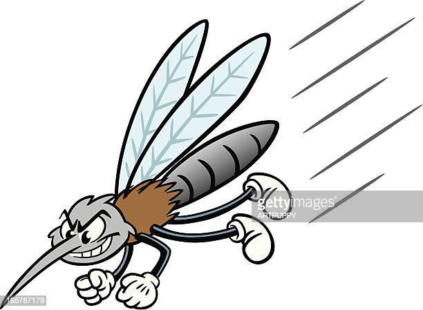 ilustraciones, imágenes clip art, dibujos animados e iconos de stock de mosquito de historieta - mosquito