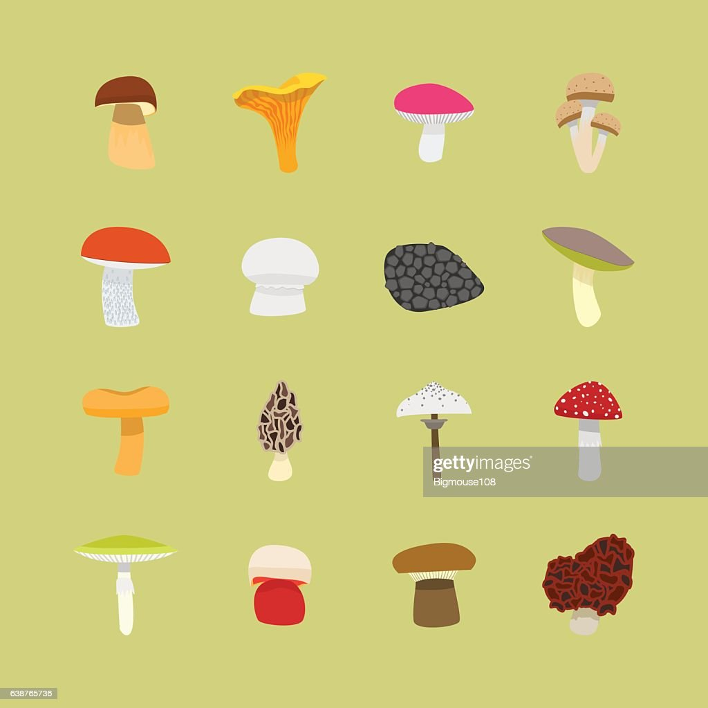 Cartoon Mushrooms Icon Set. Vector