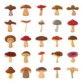 Cartoon mushrooms vector illustration set.