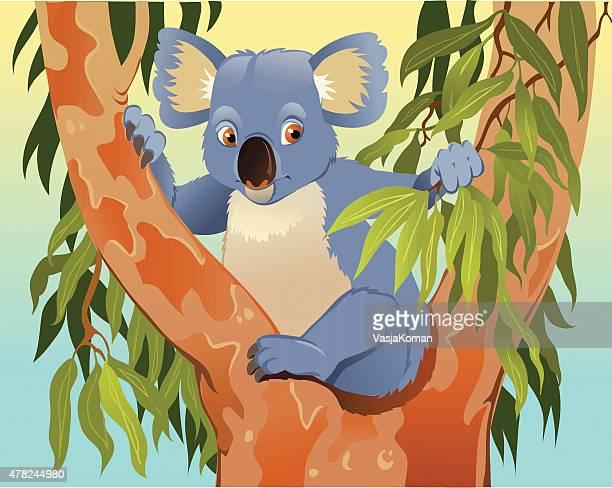 illustrations, cliparts, dessins animés et icônes de dessin animé de koala dans tree - koala