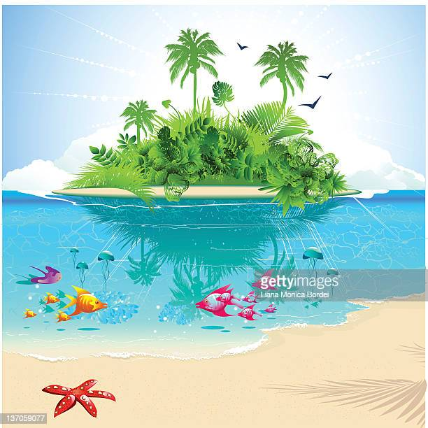cartoon of ocean and island with tropical fish and greenery - island stock illustrations