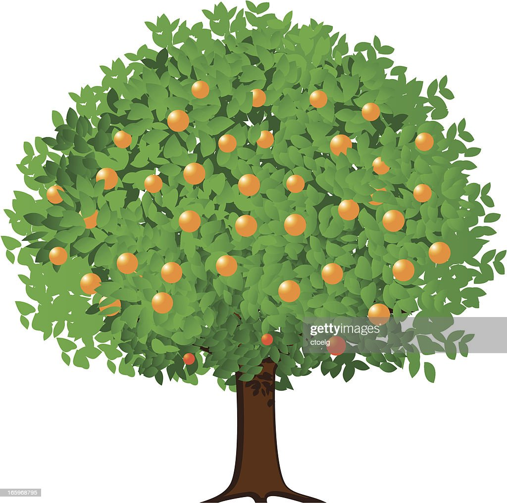 A cartoon orange tree bearing fruit