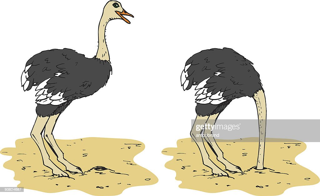 Cartoon ostrich putting head in the sand