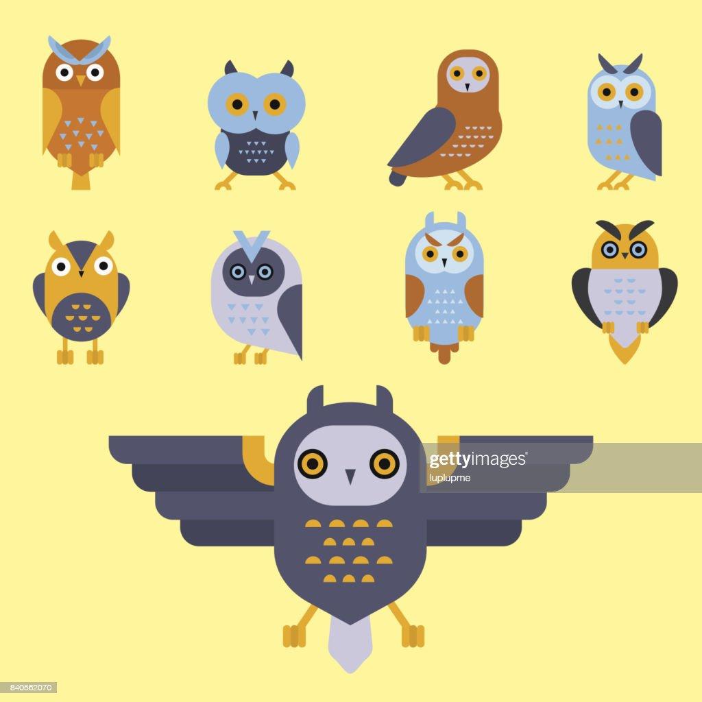 Dessin Animé Chouette Oiseau Mignon Personnage Symbole
