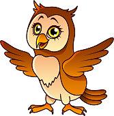 Cartoon owl isolated vector illustration