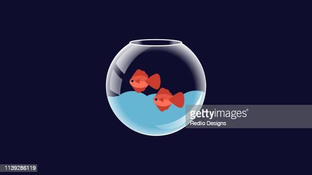 cartoon red fish in fishbowl vector icon - fishbowl stock illustrations, clip art, cartoons, & icons