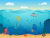 Cartoon Sea Underwater Scene Color Background. Vector