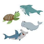 Cartoon sean animals set. Sea turtle, shark, hammerhead fish, beluga white whale. Sea and ocean animals. Kid education vector illustration collection.