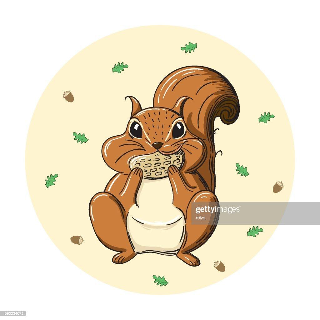 Cartoon squirrel holding acorn - Illustration : stock illustration
