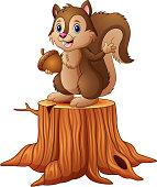 Cartoon squirrel standing on tree stump holding an acorn