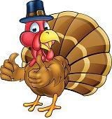 Cartoon Thanksgiving Turkey Bird in Pilgrims Hat