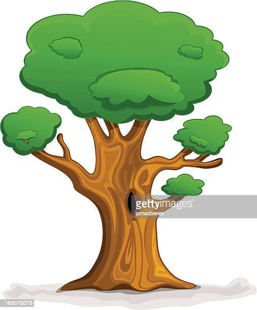 cartoon tree - cedar tree stock illustrations, clip art, cartoons, & icons