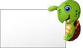 Cartoon Turtle holding blank banner