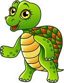 Cartoon turtle isolated vector illustration