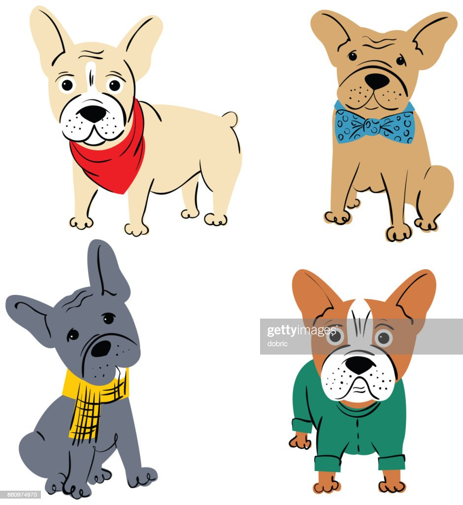 Cartoon vector character french bulldog