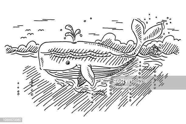 Cartoon-Wal In der Ozean-Zeichnung