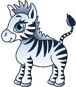 Cartoon zebra isolated vector illustration