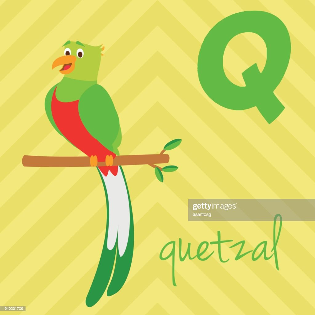 Cartoon zoo alphabet with animals. Spanish name: Q for Quetzal