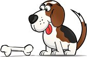 Cartoonish Beagle staring a bone