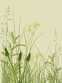 Cartoonish overgrown grass and wild plants in varying greens