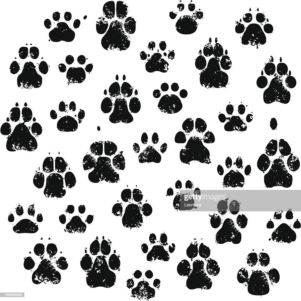Cat And Dog Paw Prints stock illustration - Getty Images