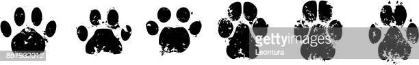 ilustrações de stock, clip art, desenhos animados e ícones de cat and dog paw prints - pegadadepatadeanimal