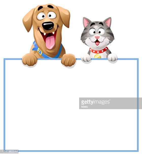 cat and dog peeking over blank sign - dog stock illustrations