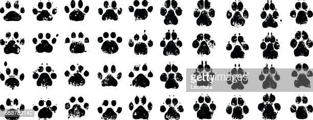 cat and dog prints - dog stock illustrations