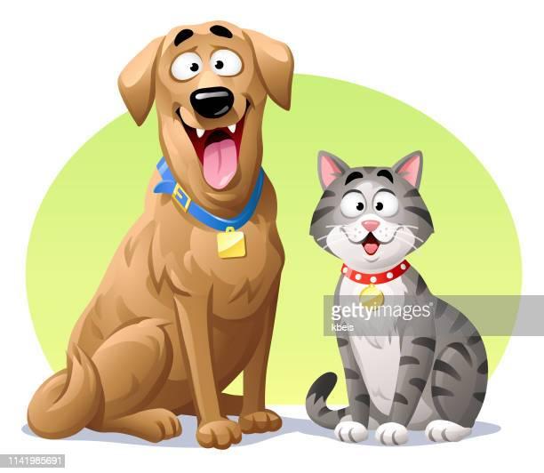 illustrations, cliparts, dessins animés et icônes de chat et crabot - chat humour