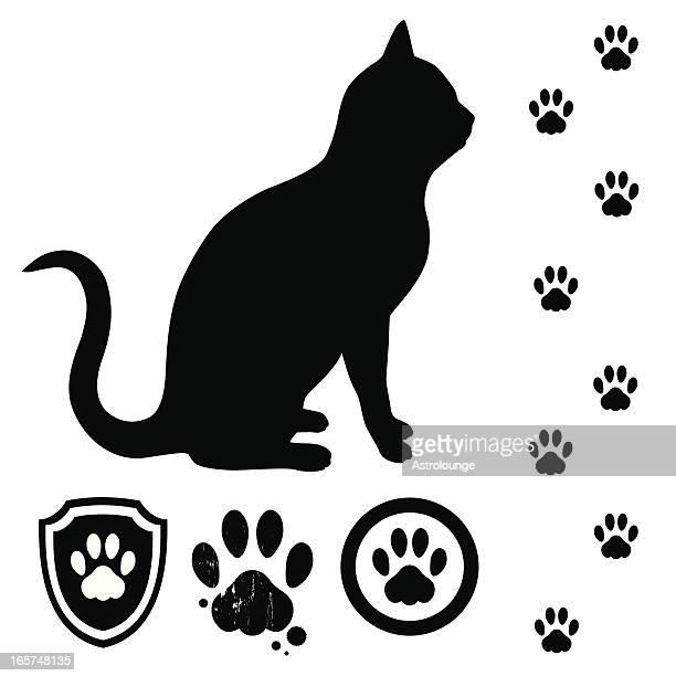 Cat and tracks