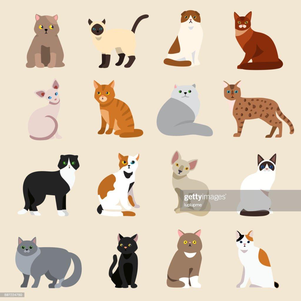 Cat breeds cute pet animal set