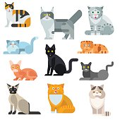 Cat breeds poster cute pet animal set vector illustration