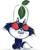 cat cherry eye