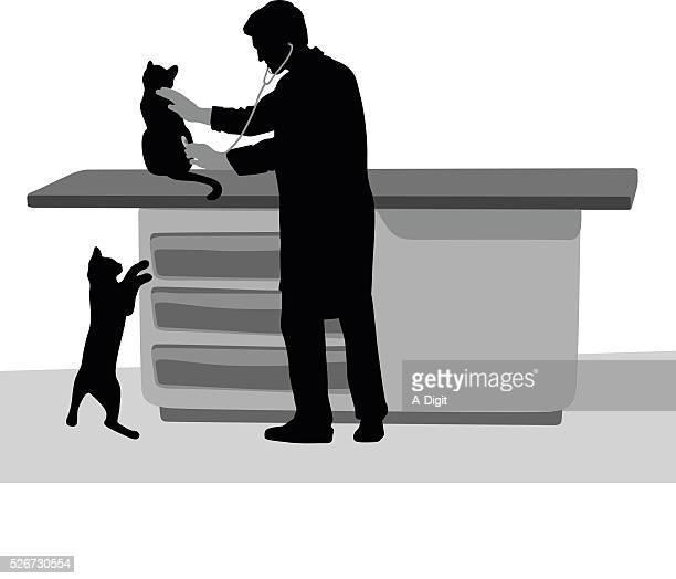 猫ご友人とご一緒に獣医