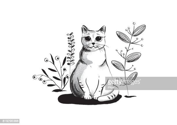 illustrations, cliparts, dessins animés et icônes de illustration de cat / noir et blanc - chat humour