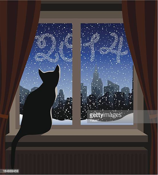 Cat Looking at Winter City 2014