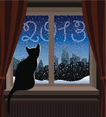 Cat Looking at Winter City