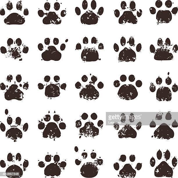 cat prints - animal track stock illustrations, clip art, cartoons, & icons