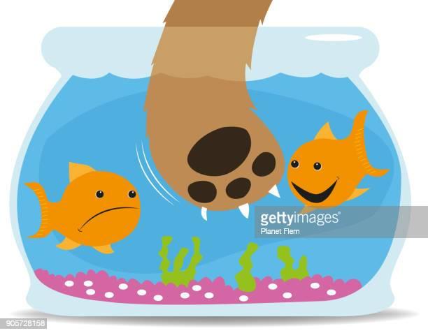 cat seeking fish - fishbowl stock illustrations, clip art, cartoons, & icons
