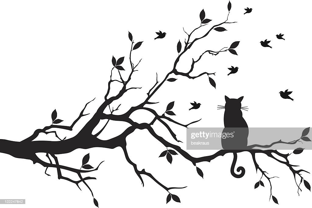cat sitting on a tree branch