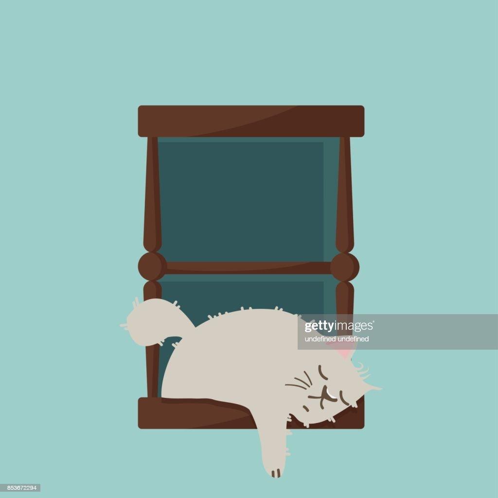 cat sleep on window