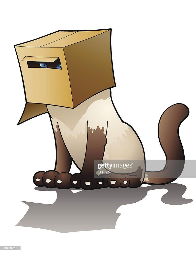 Cat Things – Inside a box