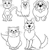 Cats And Dogs Cartoon