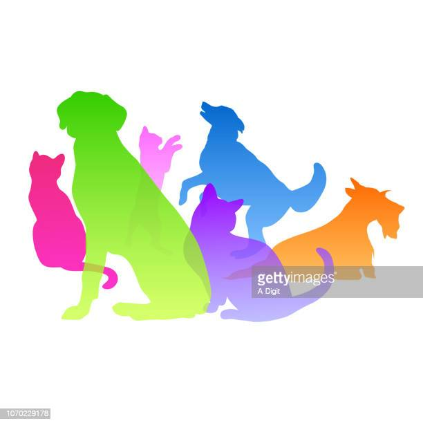 Cats And Dogs Personality