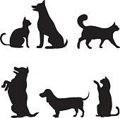 Cats and dogs set