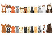 cats and small dogs border set, front view and rear view