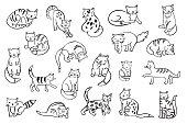 cats animals vector illustrations set