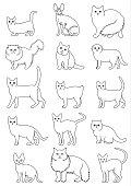 cats breeds line art set