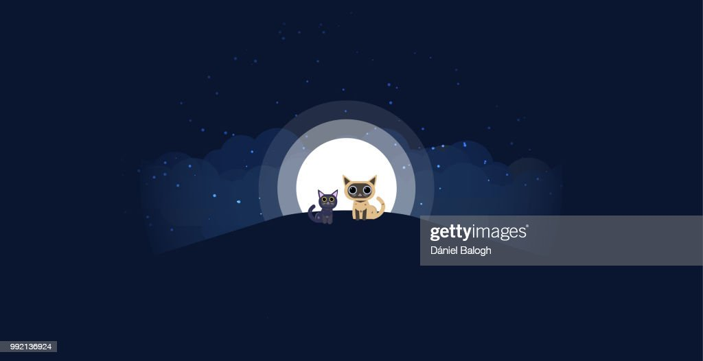 Cats sitting on a hill background of the moonlight. All in a single layer. Vector illustration. Black and cream cat on hilltop with moon in a starry night in the background. : Vector Art
